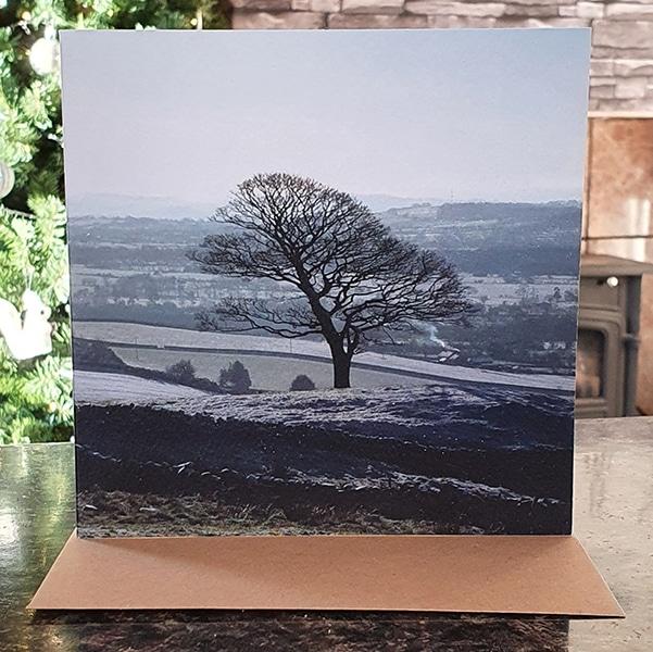 Staffs Tree Photo card by Sarah Rowley