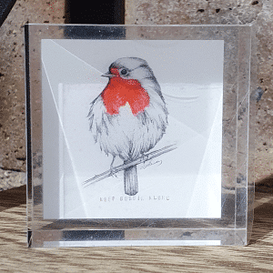 Robin Mini by sarah rowley