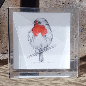 Robin Mini