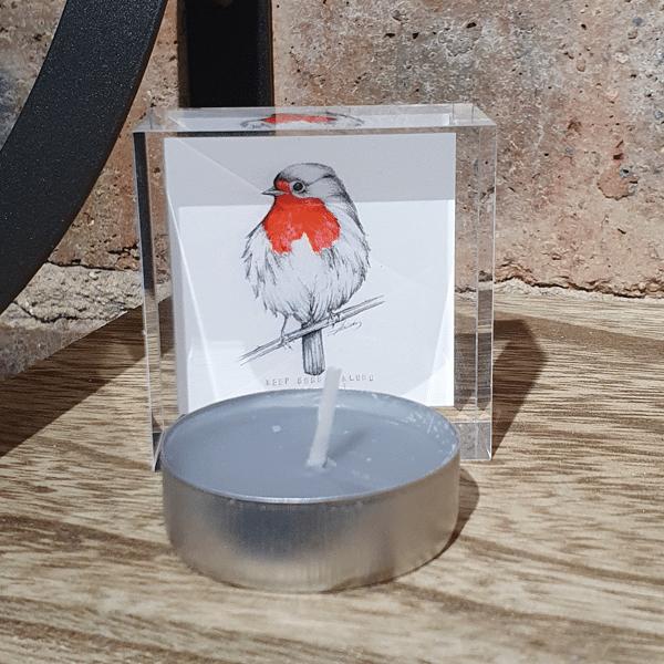 Robin Mini by sarah rowley