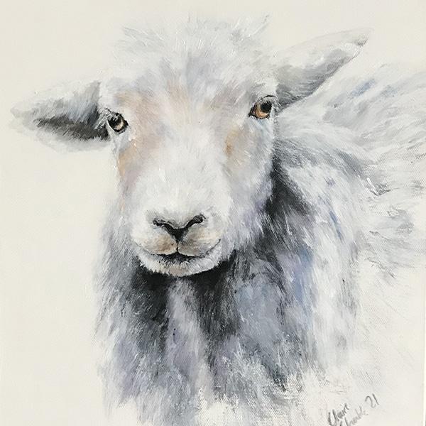 Herd 1 ewe