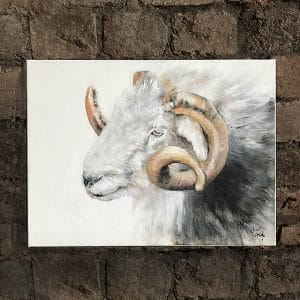 Herd 2 Cumbrian Tup on wall