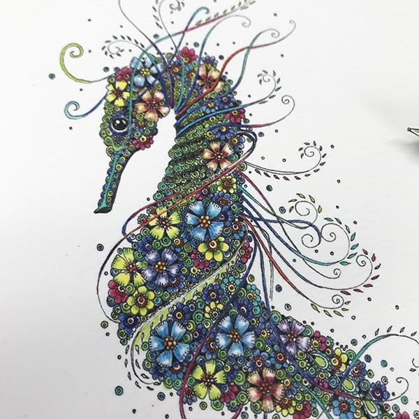 Seahorse close up