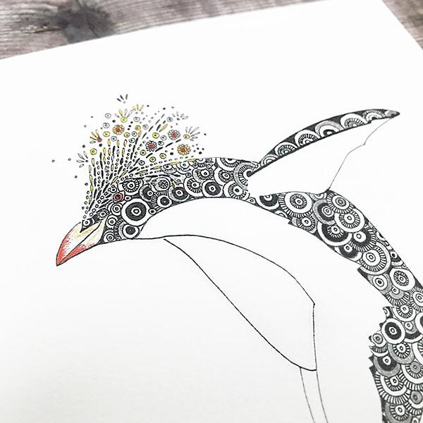 penguin close up